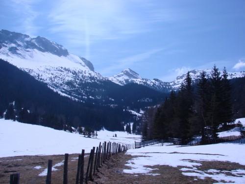 villard de lans,isère,vercors,randonnées,rando,blog,nature,quatre montagne,environnement,écologie,animaux sauvages,flore,faune