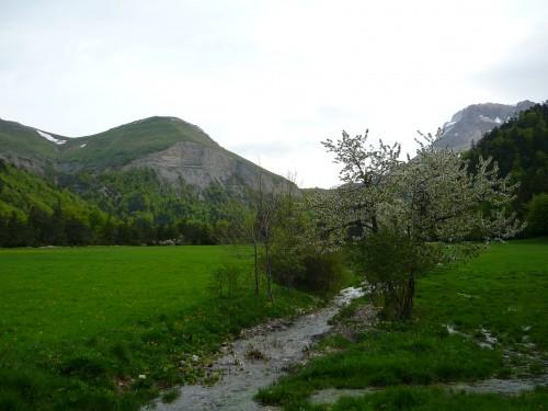 Luz la Croix Haute, mai 2009 029.jpg